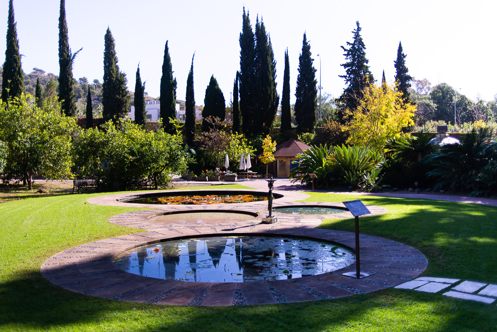 Aquatic Plants Botanical Garden