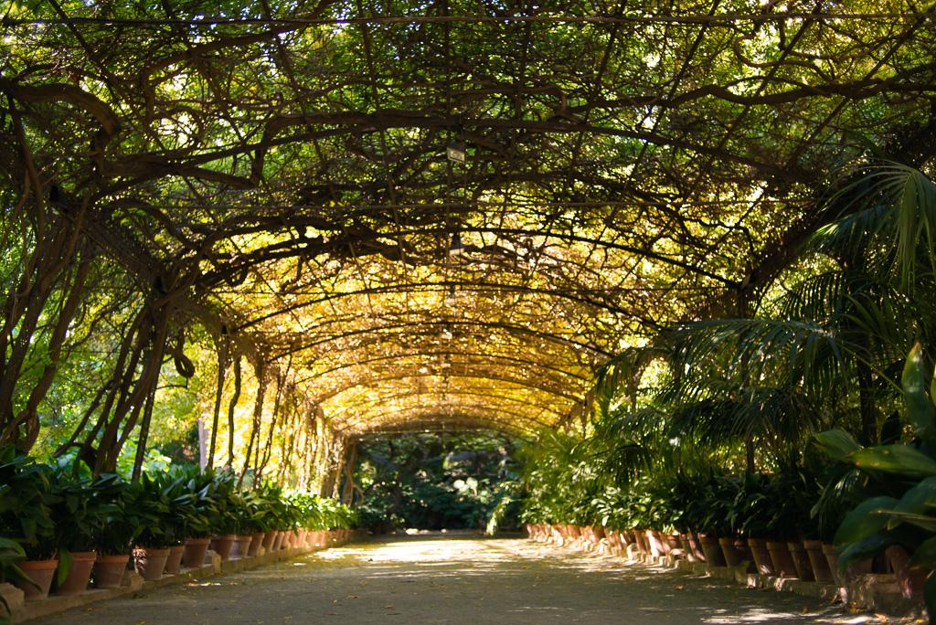 The Arbour Botanical Garden Malaga