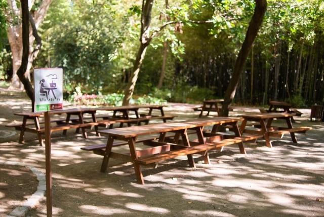 Picnic Area Botanical Garden Málaga