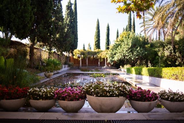 Pond Botanical Garden Málaga