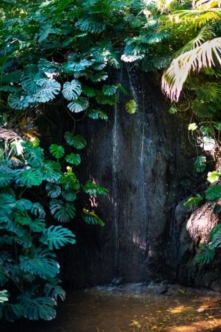 Waterfall Botanical Garden Málaga