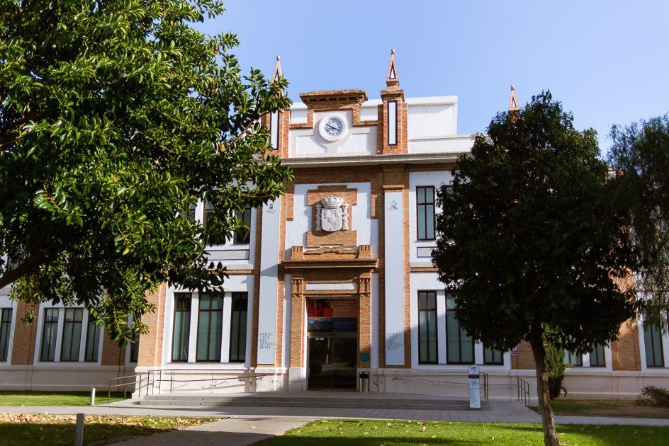 Museo collection ruso